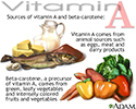 Vitamin A source